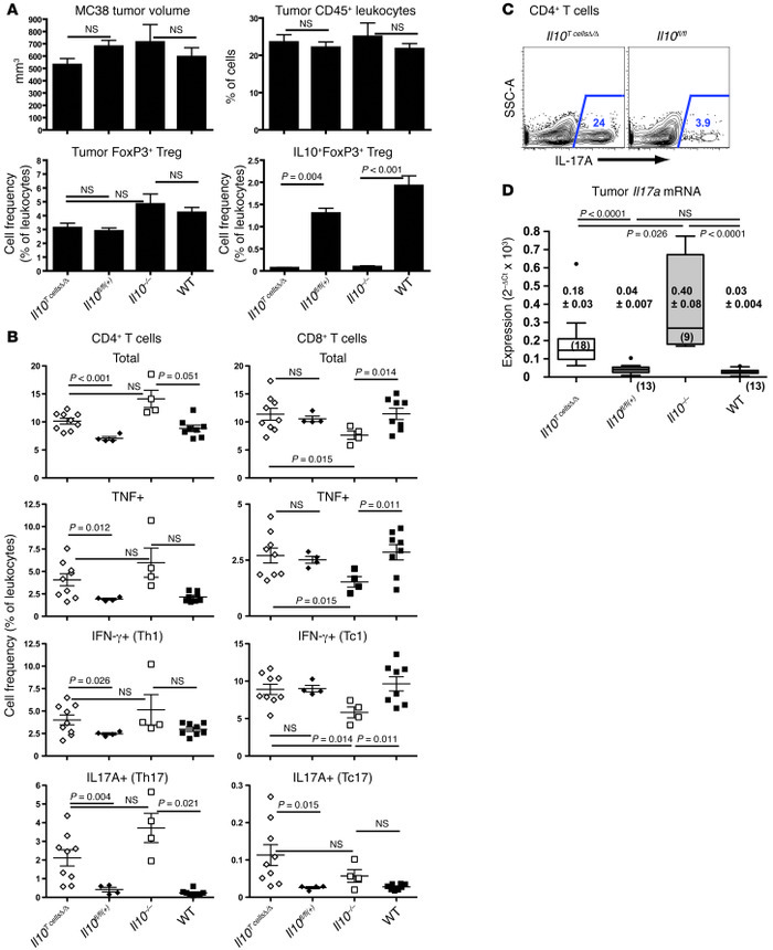 Expression of Il17a and frequencies of IL-17–producing cells in MC38 tum...