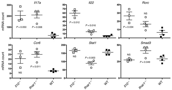 Ifnar1 and Il10 suppress Th17-associated gene expression by tumor CD4+ ...