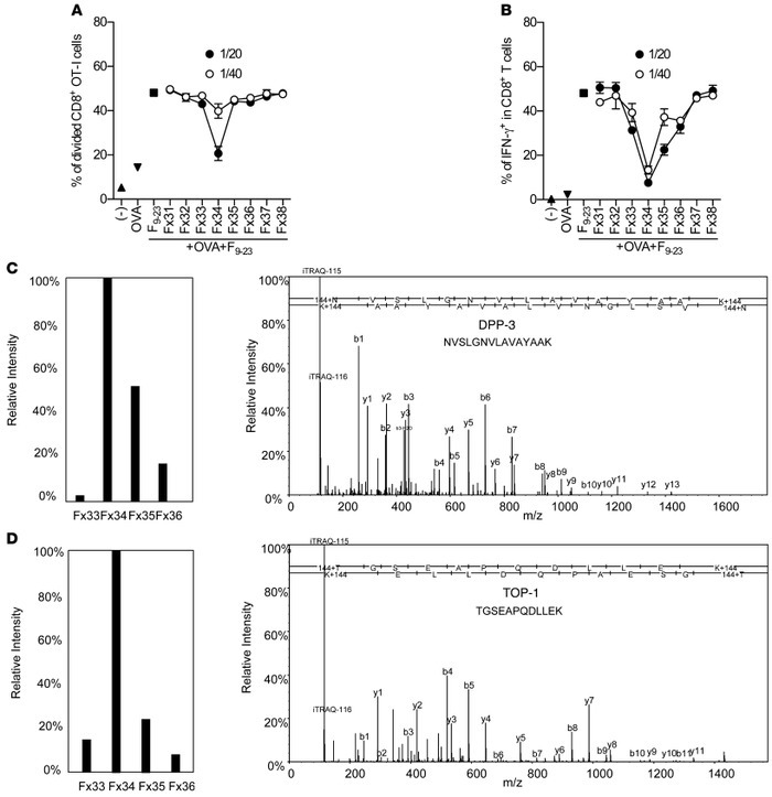 Purification and identification of peptidases controlling cross-priming ...