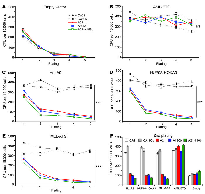 Inhibition of miR-21 and miR-196b specifically interferes with HOX-media...