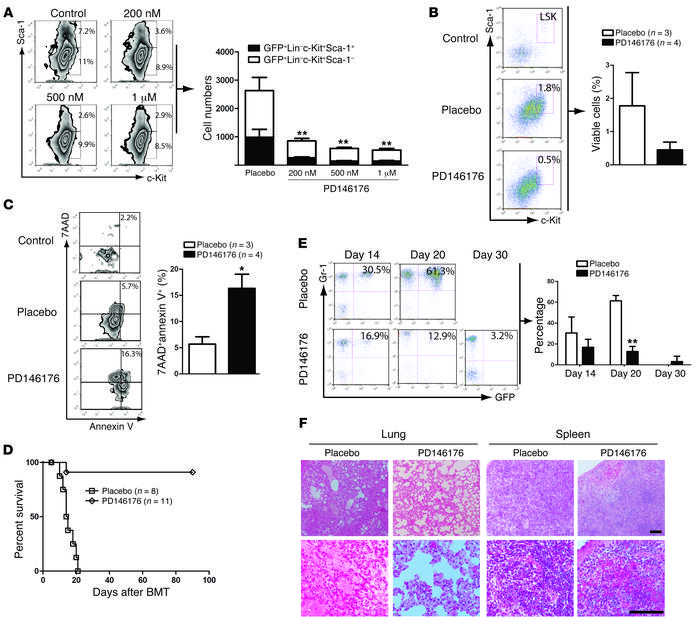 Inhibition of Alox15 impairs LSCs and prolongs survival of CML mice. (A)...