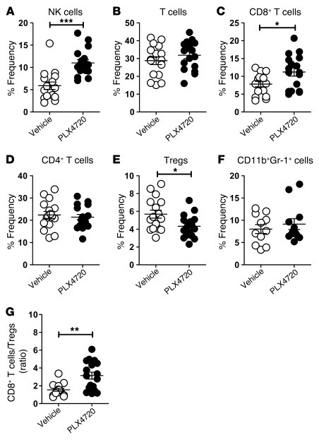 PLX4720 enhances the intratumor CD8+ T cell/Treg ratio and proportion of...