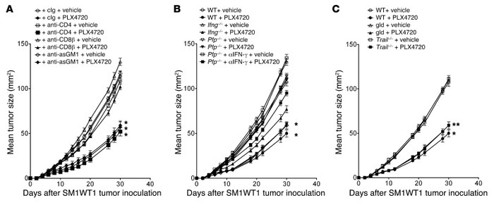 PLX4720 antitumor activity is CD8+ T cell dependent.   (A) Groups of 5 W...