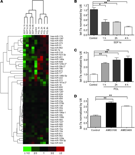 CXCR4-mediated signaling influences miRNA profiles in OCI-AML3 cells. (A...
