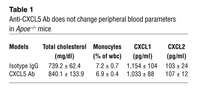 Anti-CXCL5 Ab does not change peripheral blood parameters in Apoe–/– mice