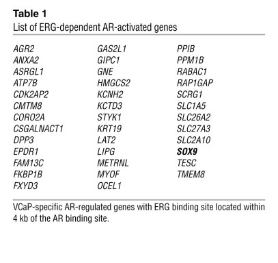 List of ERG-dependent AR-activated genes