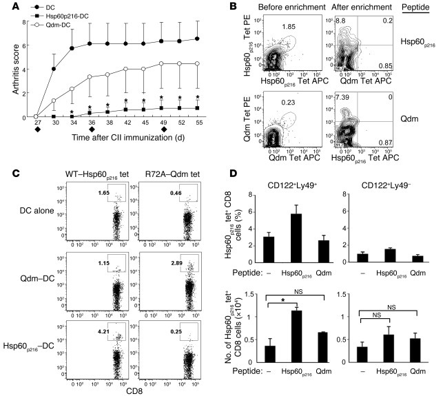 Selective expansion of Hsp60p216-specific Qa-1–restricted CD8+ Tregs inh...