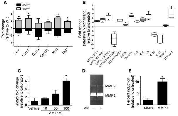 AM is a direct activator of uNK cells in vivo and in vitro. (A) Using a ...