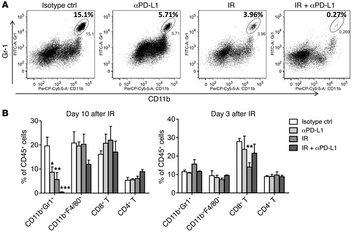 IR and PD-L1 blockade induce the reduction of MDSCs. Tumors received 12 ...
