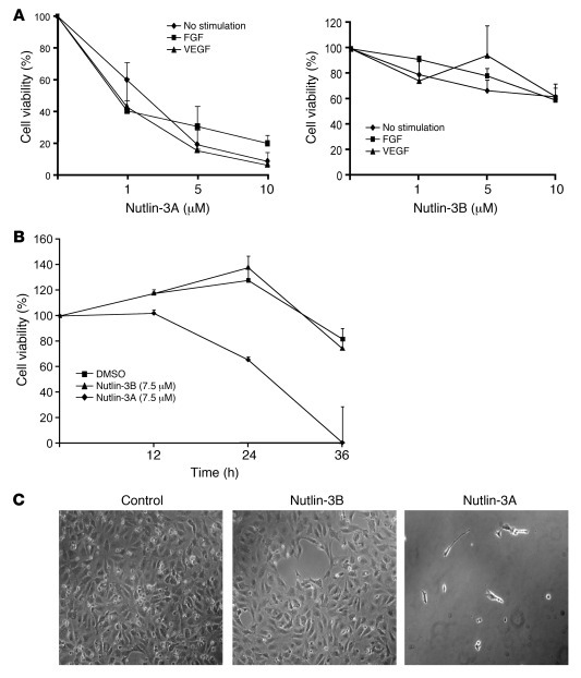 Nutlin-3 inhibits HUVEC proliferation. (A) Nutlin-3A or Nutlin-3B in 1, ...