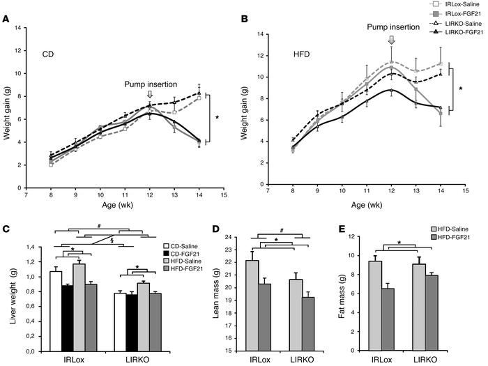 Effects of FGF21 on body and tissue weights. Control and LIRKO mice were...