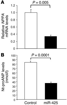 miR-425 transfection reduces NPPA mRNA levels and secretion of Nt-proANP...