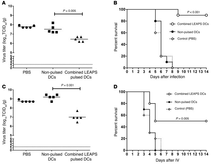 Combined influenza-J-LEAPS–loaded DCs reduce morbidity and mortality in ...