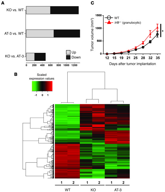 The gene expression profile of CD11b+Gr-1hi cells from Irf8–/– mice rese...