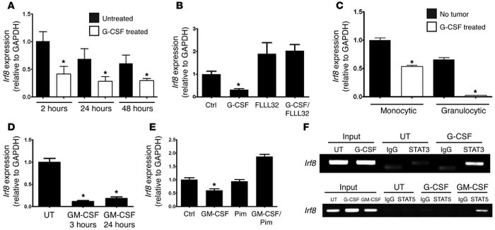 MDSC-associated myelopoietic growth factors inhibit Irf8 expression thro...