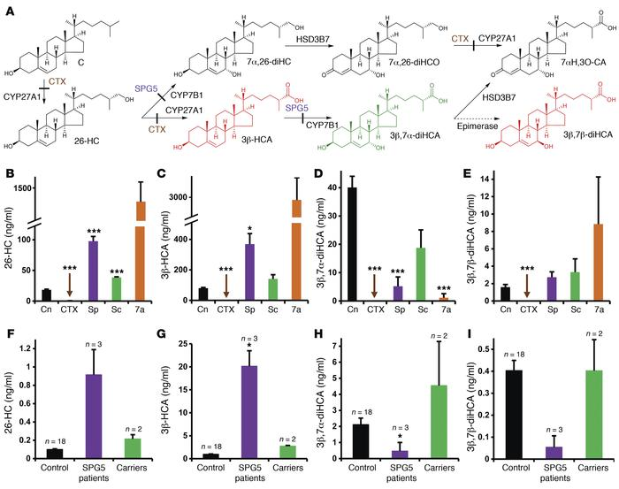 Biosynthesis of cholestenoic acids in brain and levels of cholestenoic a...
