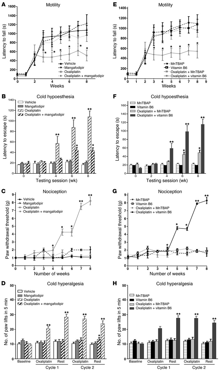 In vivo study of oxaliplatin-induced neurotoxicity. Experimental mice re...