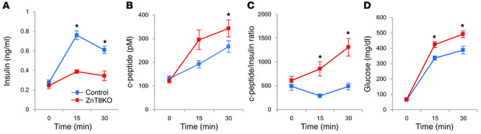 c-peptide/insulin ratio in ZnT8KO and control mice. (A) Insulin concentr...