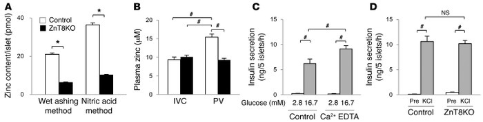 Zinc secreted from islets suppresses insulin secretion. (A) Zinc content...