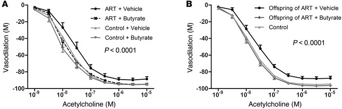 Butyrate administration to ART mice normalizes vascular function and pre...