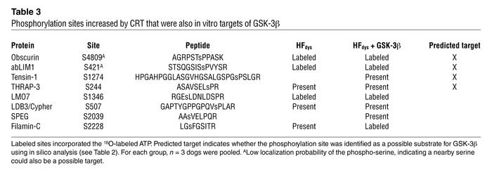 Phosphorylation sites increased by CRT that were also in vitro targets o...