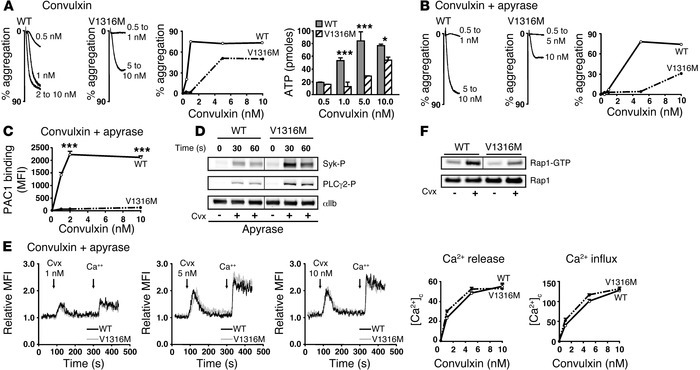 Cvx-induced activation of human control platelets pretreated with recomb...
