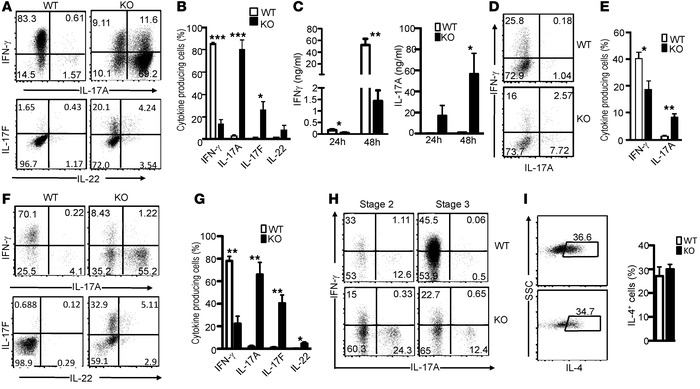 Reciprocal control of iNKT-1 and iNKT-17 by TSC1. (A and B) Increased IL...