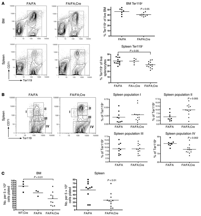 Deletion of p110α impairs erythroblast differentiation. (A) Representati...