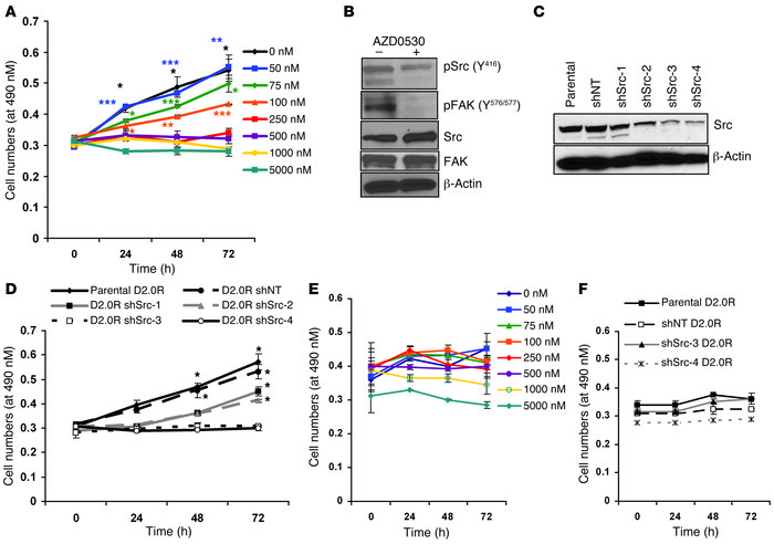 SFK inhibition prevents the dormant-to-proliferative switch of D2.0R cel...