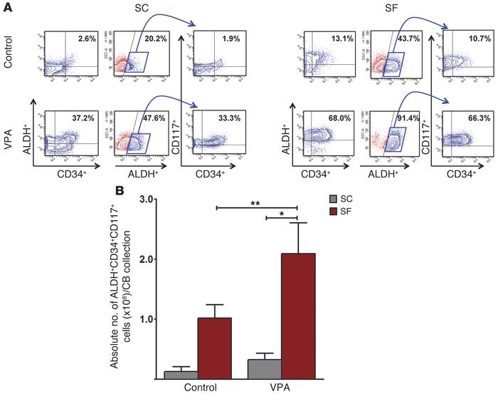 ALDH functional activity in expanded CB CD34+ cells. (A) PCs treated und...