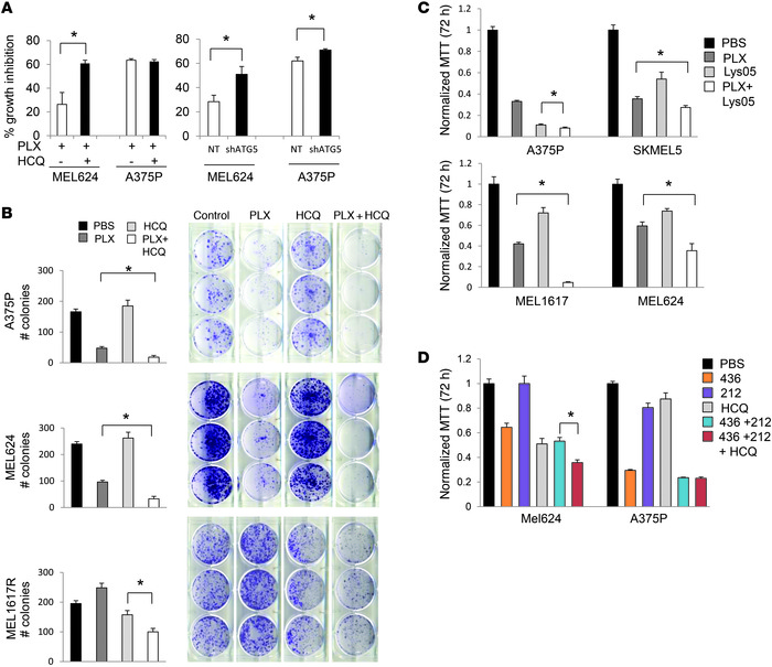 Autophagy inhibition augments growth impairment associated with BRAFi. (...
