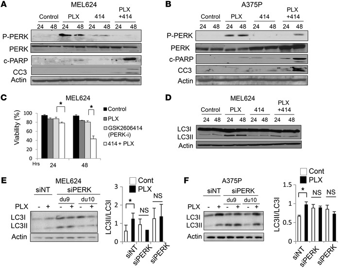 Targeting the BRAFi-induced ER stress response blocks autophagy and enha...