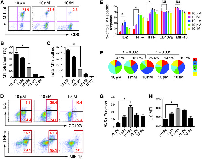 Influenza virus M1-pulsed moDCs induce concentration-dependent prolifera...