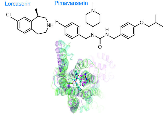 Structures of lorcaserin and pimavanserin in relationship to the seroton...