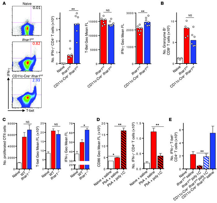 Type I IFN signaling in cDCs impairs Th1 priming in vivo. (A) FACS analy...