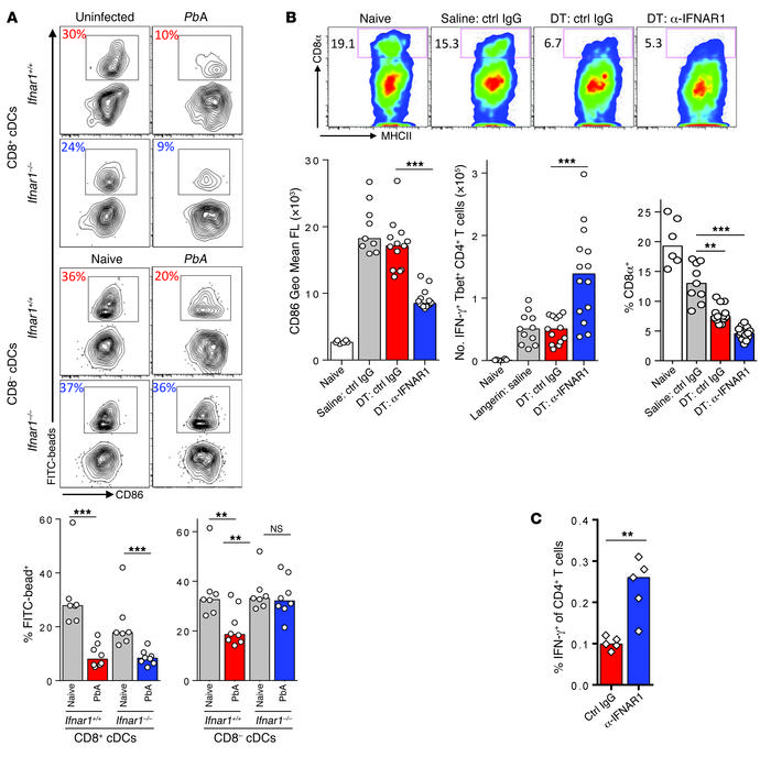 Type I IFN signaling suppresses in vivo Th1 responses independently of C...