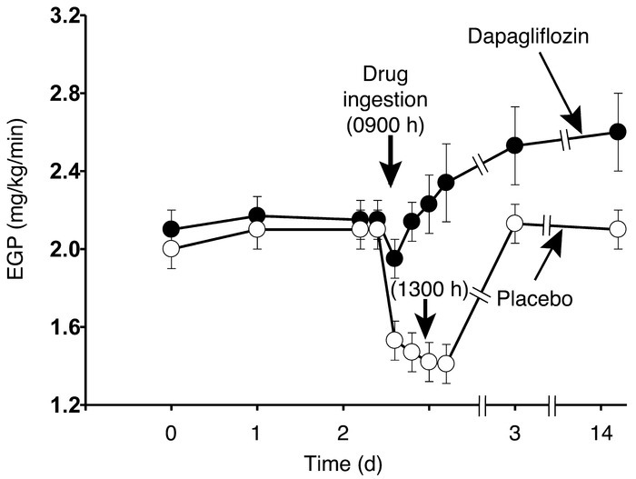 Basal EGP before and after ingestion of dapagliflozin or placebo EGP was...
