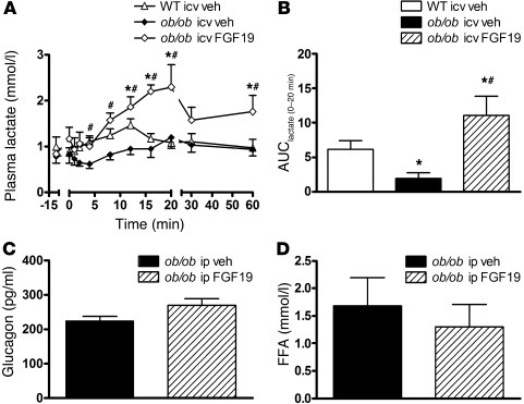 Effect of FGF19 on plasma glucagon, FFA, and lactate levels in ob/ob mic...