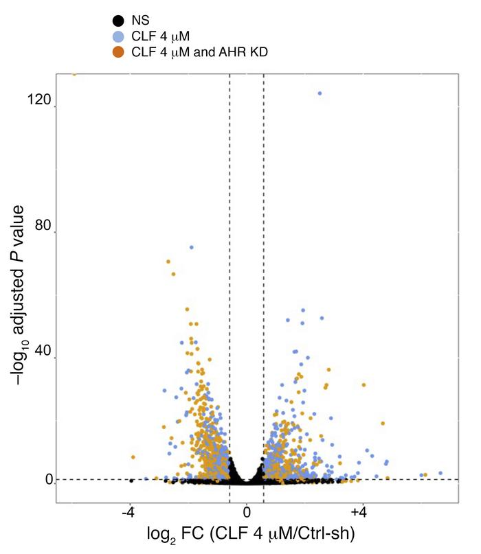 CLF and AHR work in overlapping pathways. Volcano plot of differentially...