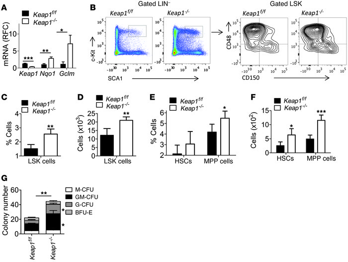 Augmenting NRF2 signaling by genetic disruption of Keap1 improves HSPC f...