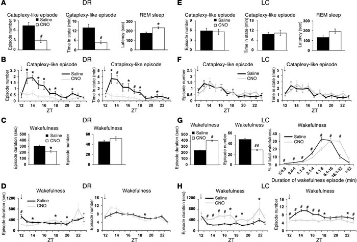 Pharmacogenetic activation of DR serotonergic and LC noradrenergic neuro...