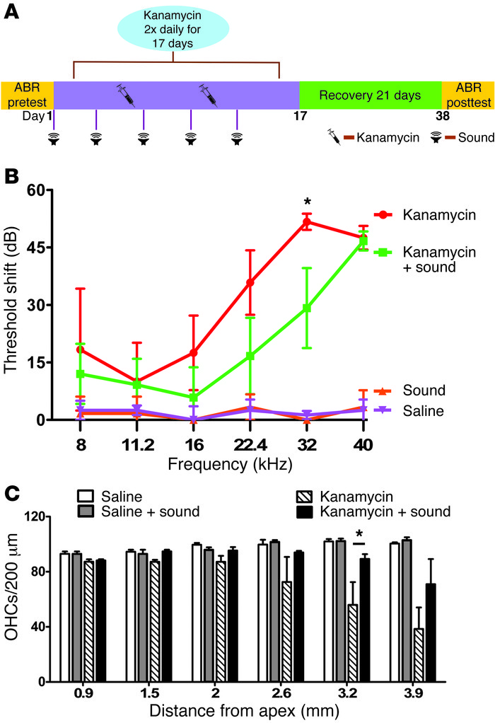 Sound preconditioning protects against aminoglycoside-induced hearing lo...