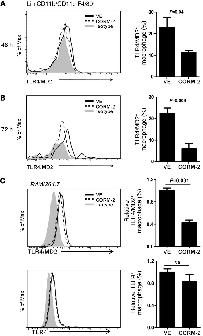 CORM-2 reduces macrophage TLR4/MD2 receptor expression during AP. (A and...