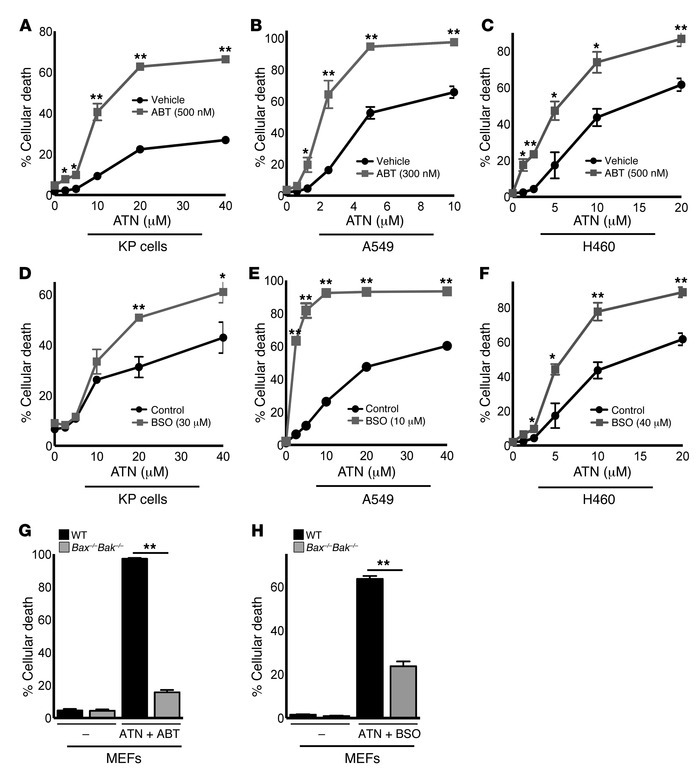 ATN-224 synergizes with proapoptotic and pro-oxidant drugs to induce aug...