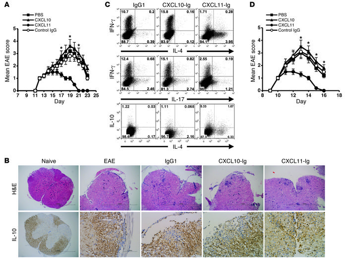 CXCL11-Ig suppresses ongoing EAE while selecting IL-10hi Tregs that tran...