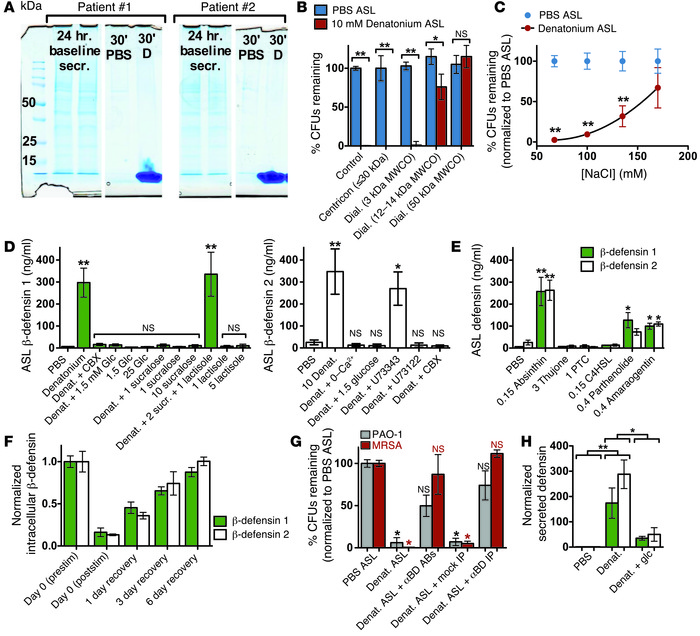 T2R agonists stimulate secretion of β-defensins from HSECs. (A) Coomassi...