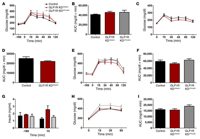 Glucose tolerance phenotypes of Glp1r mutant mice. (A) i.p. GTT on chow ...