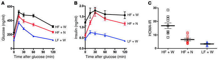 Treatment with pNAPE-EcN reduces the insulin resistance index and increa...
