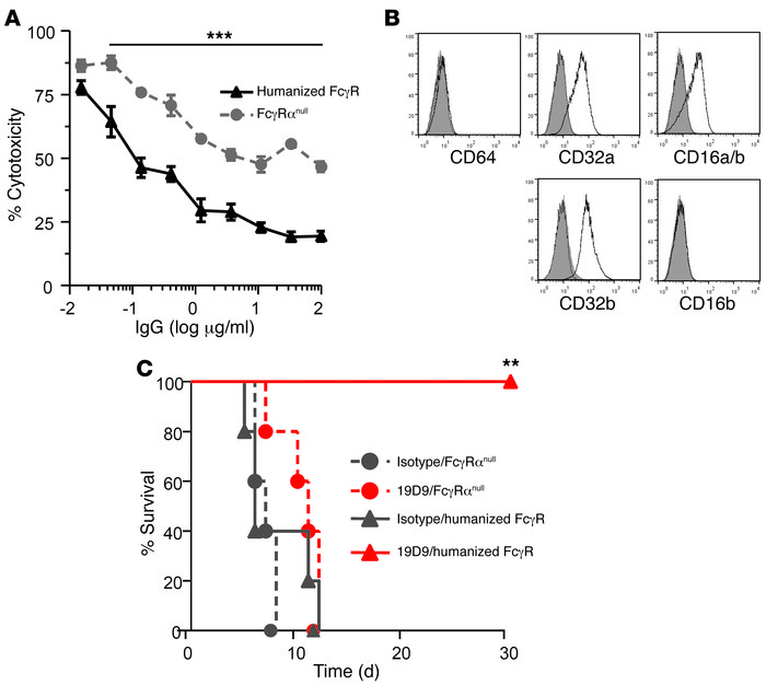 FcγR requirement for the neutralizing activity of the anti-PA mouse-huma...