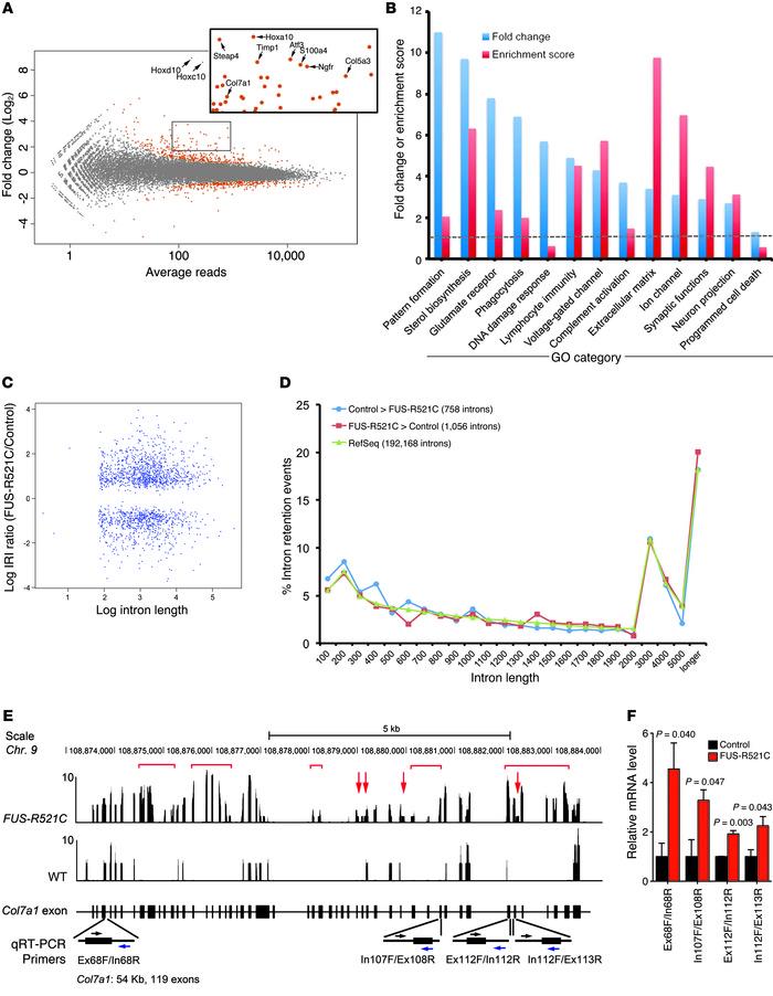 RNA-seq analyses reveal transcription and splicing defects in FUS-R521C ...